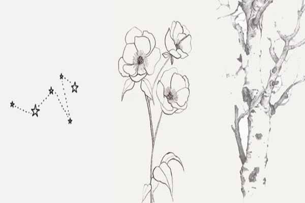 Flower drawing techniques